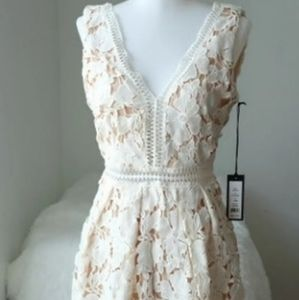 Romeo & Juliet Couture Lace Dress NWT